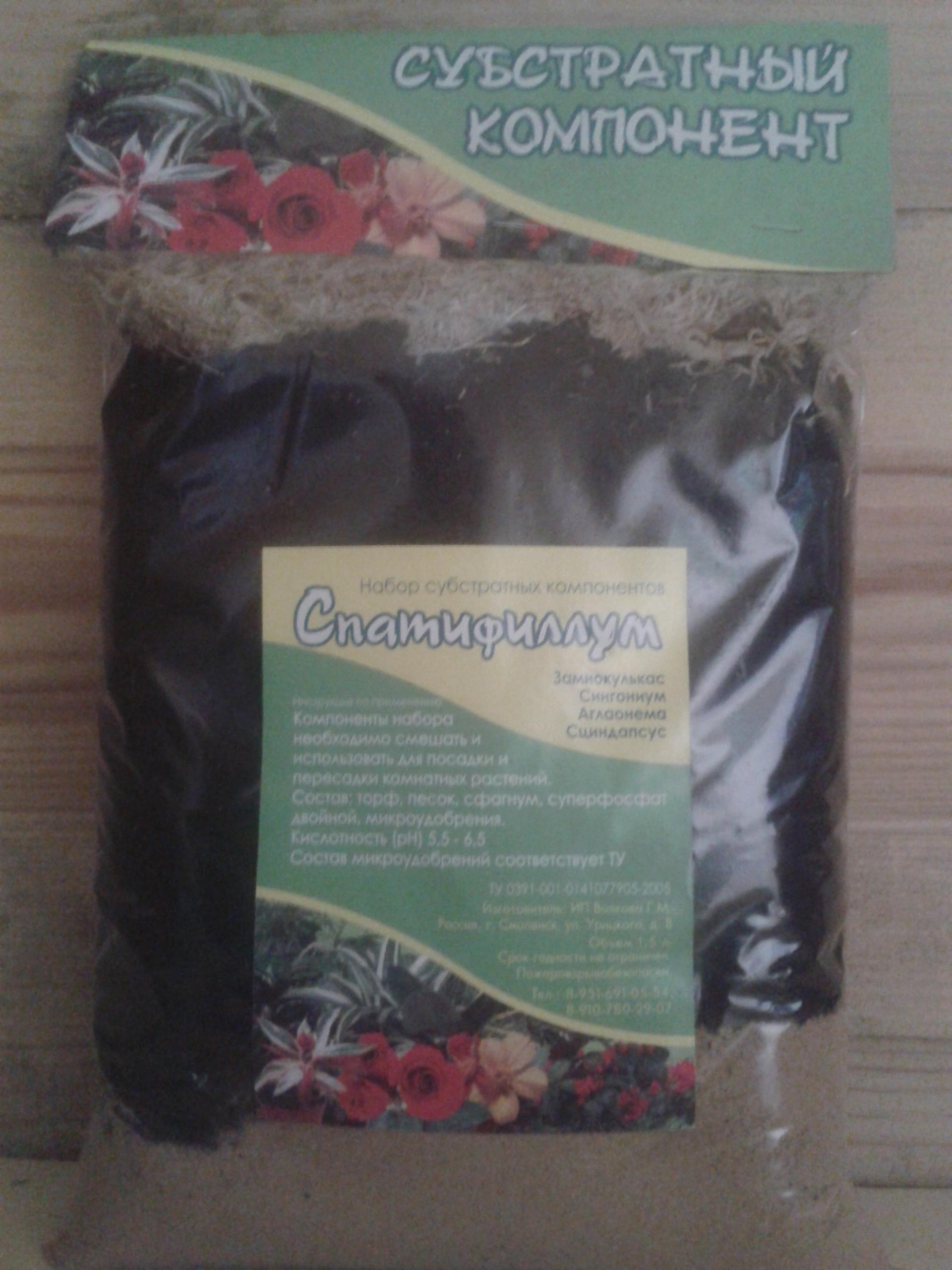 спатифиллум цветок женское счастье уход в домашних условиях